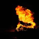 foc pitarai