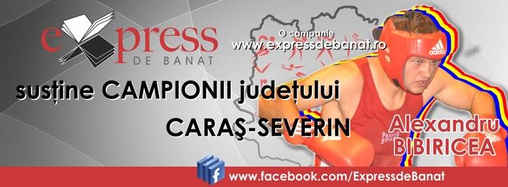AlexandruBibiricea-facebook